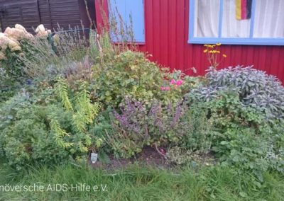 2016-09-21 Erntezeit im Vereinsgarten 01