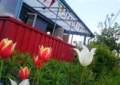 2017-05-13 Frühling im Vereinsgarten 02